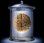 brain in a vat