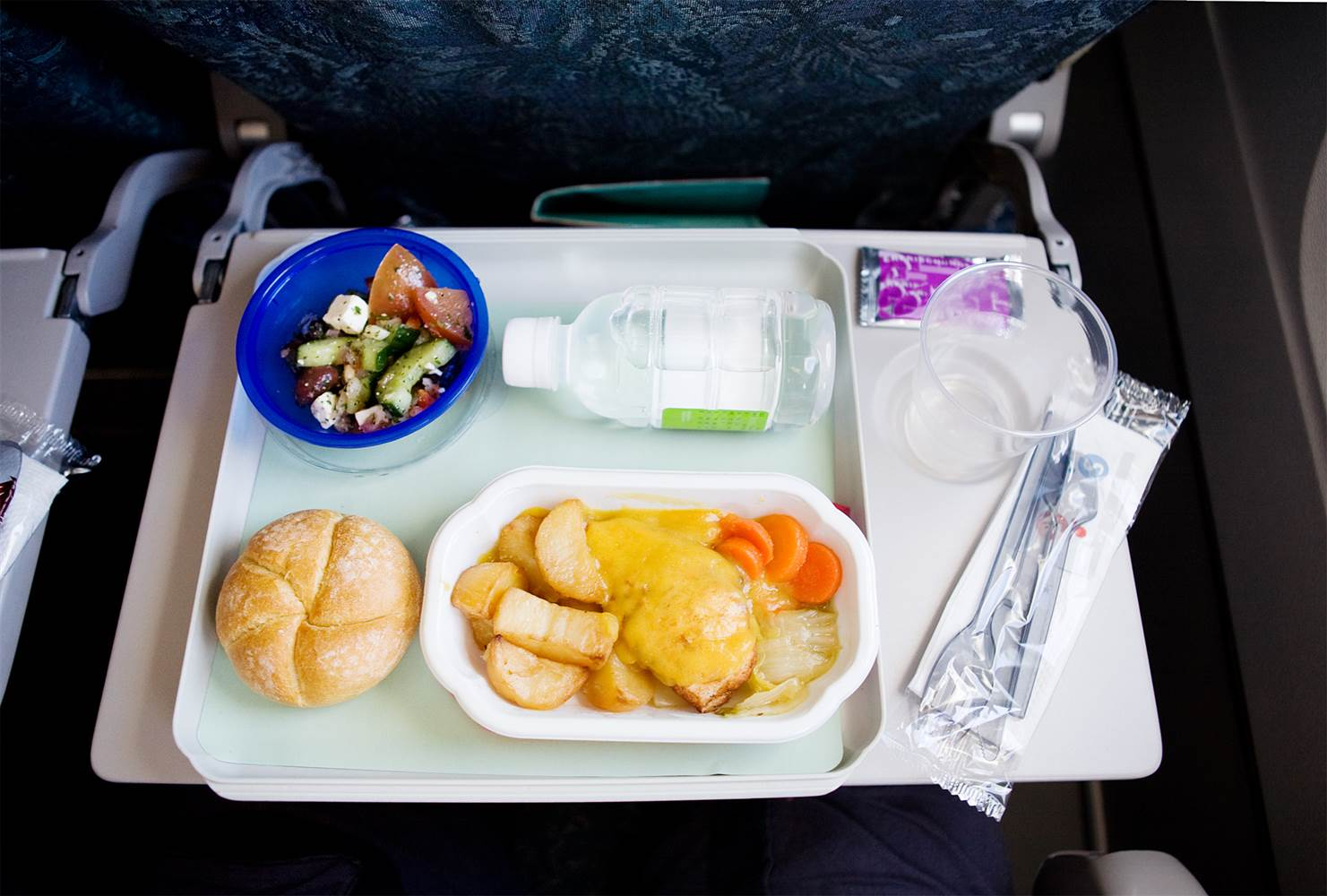 Can I Bring Food On A Plane United Airlines