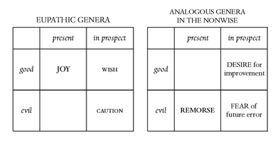 positive emotions among wise and non-wise